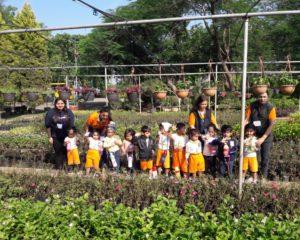 nursery school in indore